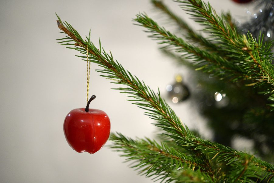 Julgranen bör helst vara krav-märkt skriver Naturskyddsföreningen.