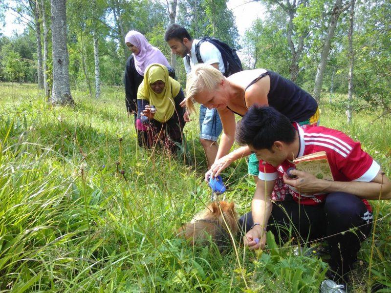 Bild från en naturguidning som nyanlända har hållit via Naturskyddsföreningen i Örebro.