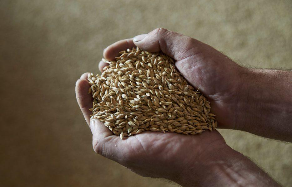 Forskarna menar atten anledning till att det är en låg grad av entreprenörsskap i lantbruket är en låg acceptans för att sticka ut och göra saker annorlunda.