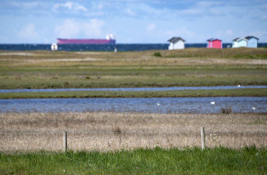 Falsterbonäset i Skåne ligger riskabelt till när havsnivån stiger.
