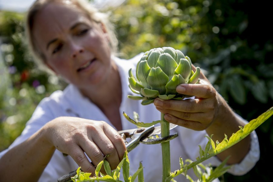 """""""Köksträdgården är en tillflyktsort som ger massor med energi"""", säger Karin Ericson."""