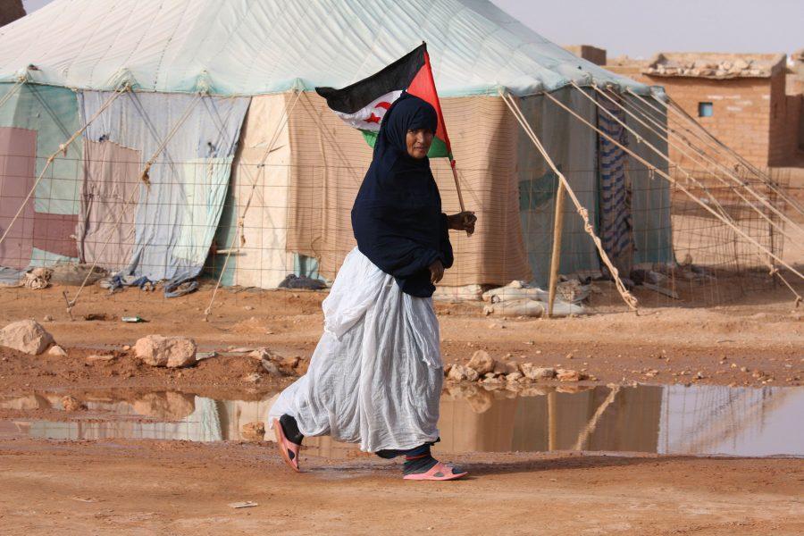 Kvinna med västsahariska flaggan i flyktinglägret Laayounenära gränsen till Algeriet.