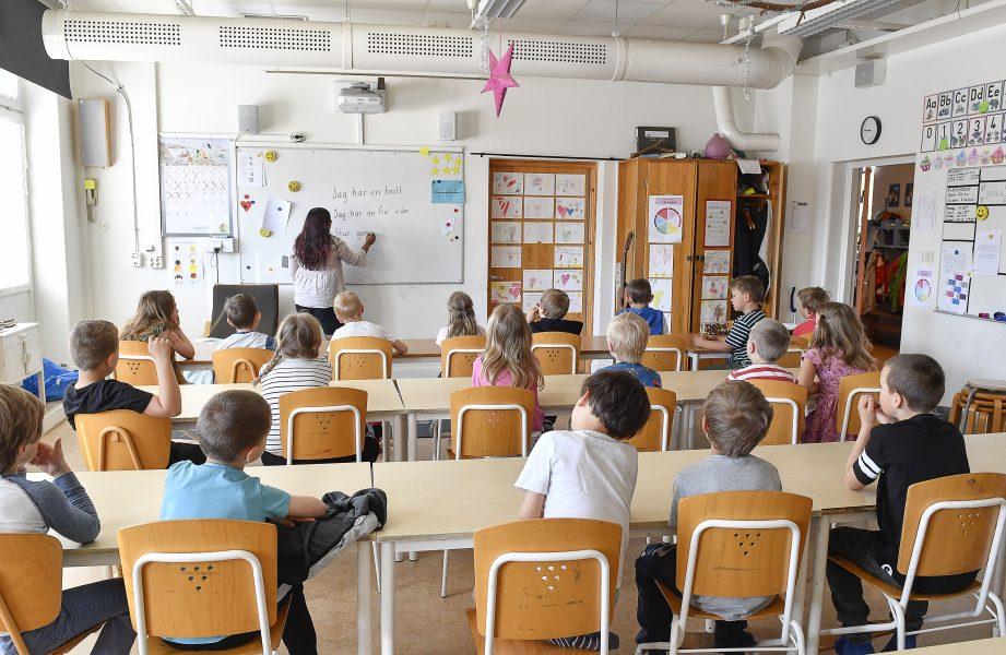 Luleå kommun har lagt ned 12 skolor och förskolor under de senaste åren.