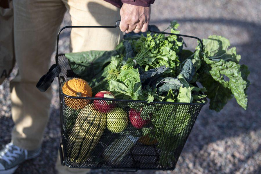 Local Food Nodes är en modell där köpare på förhand beställer varor av lokala producenter som sedan lämnas ut på ett utlämningsställe.