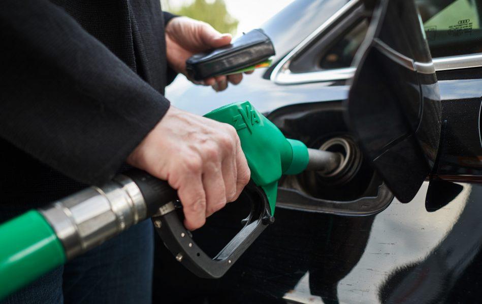 Idag importeras över 80 procent av det biodrivmedel som används inom transportsektorn i Sverige.