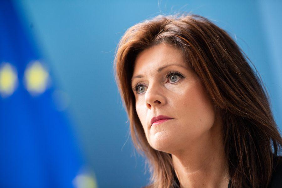 Arbetsmarknadsminister Eva Nordmark (S) balanserar på slak lina om LO:s roll.