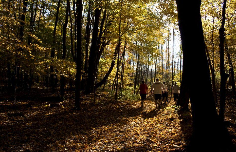 Naturen ger oss möjlighet till återhämtning och bättre hälsa.