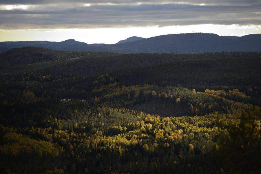 Nationalparkerna i Norrland beskrivs ofta som mystiska och sublima i besöksmaterial.