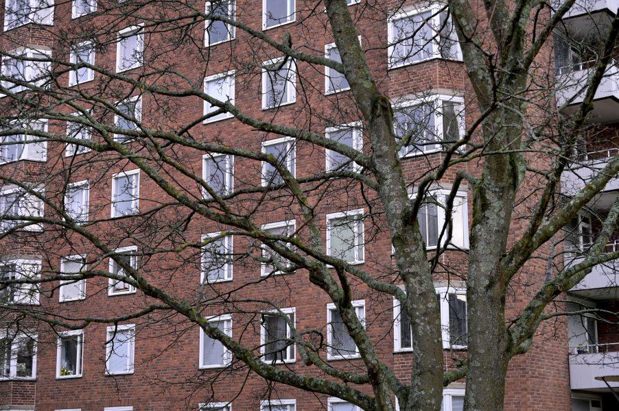 """I boken """"Bostadsmanifest"""" kräver forskare och aktivister att alla ska ha rätt till ett gott hem de har råd med."""