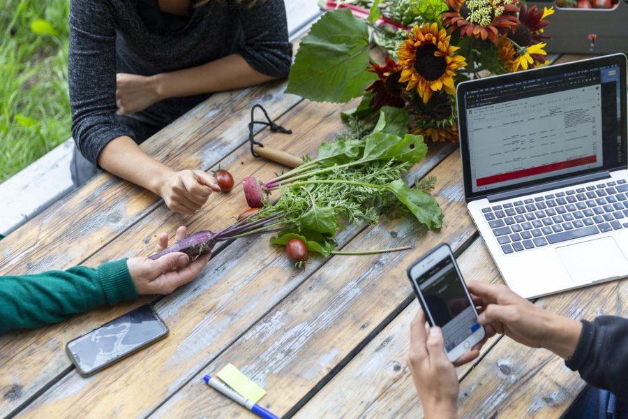 Södertälje kommun vill tillsammans med Under tallarna få fler personer att våga testa sina odlingsidéer.