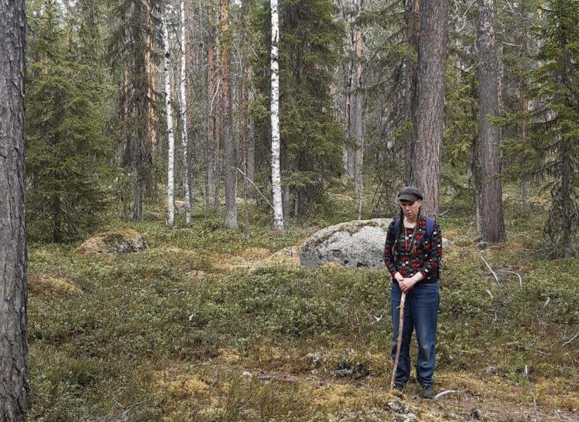 Kyrkans skogar bör brukas som kontinuitetsskogar med kallhyggesfria metoder, anser Mask.