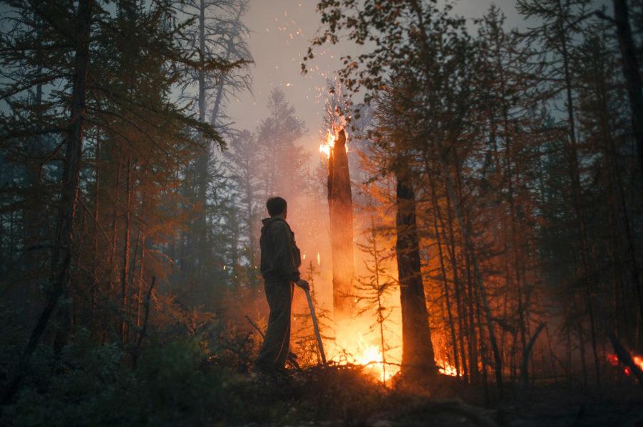 Enorma bränder härjar sedan flera veckor tillbaka i nordöstra Sibirien.
