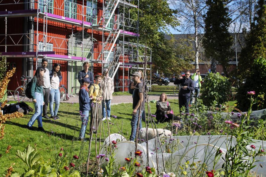 På Stallbackens kollektivodling i Kviberg i Göteborg växer det så det knakar, flera odlare beskriver hur mycket roligare och mer lärorikt det är att odla tillsammans med andra än själv.